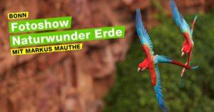 Fotoshow - Naturwunder Erde @ LVR Landesmuseum Bonn | Bonn | Nordrhein-Westfalen | Deutschland